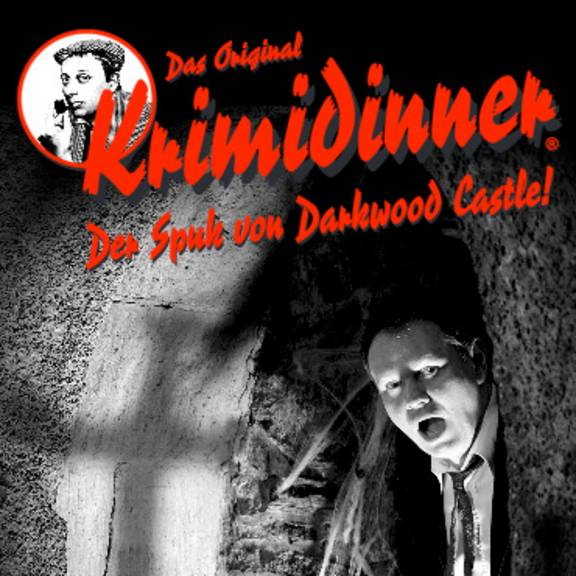DasOriginalKRIMIDINNER der spuk von darkwood castle Webquadrat